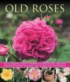 Old Roses: An Illustrated Guide to Varieties, Cultivation and Care