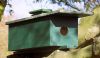 Wooden Little Owl Nest Box