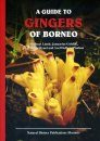 A Guide to Gingers of Borneo