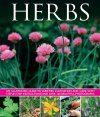 Herbs: An Illustrated Guide to Varieties, Cultivation and Care