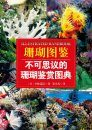 Illustrated Handbook of Coral [Chinese]