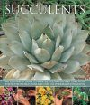 Succulents: An Illustrated Guide to Varieties, Cultivation and Care