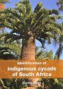 Identification of Indigenous Cycads of South Africa