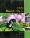 Indian Bumblebees