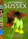 The Butterflies of Sussex