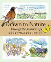 Drawn to Nature Through the Journals of Clare Walker Leslie