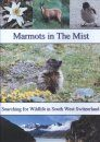 Marmots in the Mist: Searching for Wildlife in South West Switzerland (Region 2)