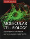 Molecular Cell Biology (Global Edition)