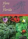Flora of Florida, Volume 6: Dicotyledons, Convolvulaceae through Paulowniaceae