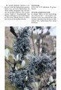 Flechten & Moose: 290 Arten Schnell Erkennen [Lichens & Mosses: Quickly Identifying 290 Species]