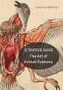 The Art of Animal Anatomy