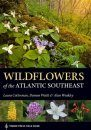 Wildflowers of the Atlantic Southeast