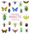 Interesting Insects