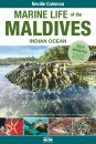 Marine Life of the Maldives - Indian Ocean