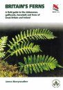 Britain's Ferns, Clubmosses, Quillworts and Horsetails
