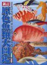 Illustrated Fishes in Colour (2-Volume Set) [Japanese]