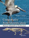 Comparative Bone Identification