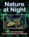 Nature at Night