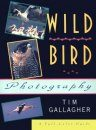 Wild Bird Photography
