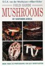 Field Guide to the Mushrooms of Southern Africa
