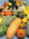 Compendium of Cucurbit Diseases and Pests