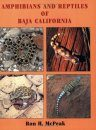 Amphibians and Reptiles of Baja California
