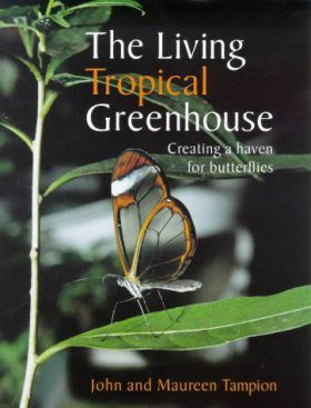 Living Tropical Greenhouse: Creating a Haven for Butterflies