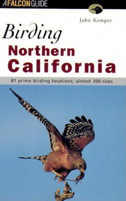 Birding Northern California
