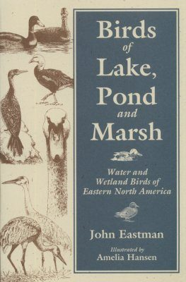 Birds of Lake, Pond and Marsh