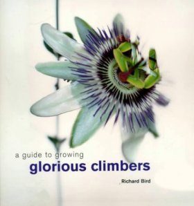 A Guide to Growing Glorious Climbers