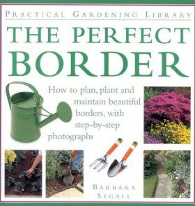 The Perfect Border