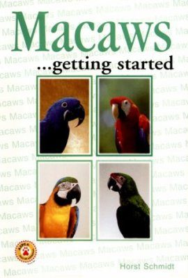 Macaws...getting started
