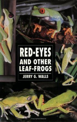 Red-Eyes and Other Leaf Frogs