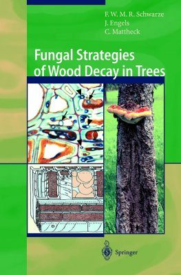 Fungal Strategies of Wood Decay in Trees