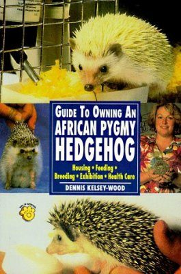 Guide to Owning an African Pigmy Hedgehog