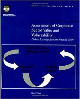 Assessment of Corporate Sector Value and Vulnerability: Links to Exchang e Rate and Financial Crisis