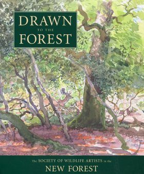 Drawn to the Forest