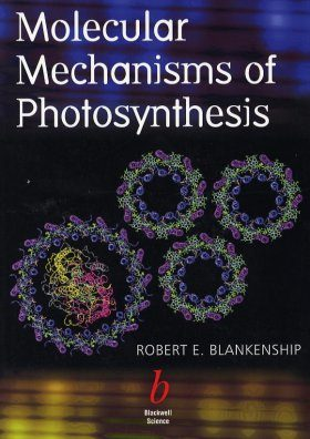 Molecular Mechanisms of Photosynthesis