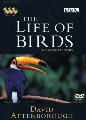 The Life of Birds - DVD (Region 2 & 4)