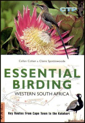 Essential Birding in Western South Africa