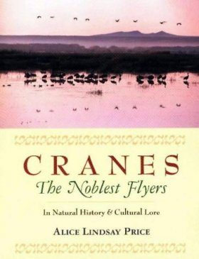 Cranes - The Noblest Flyers