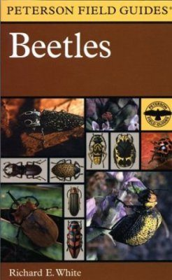 Peterson Field Guide to Beetles