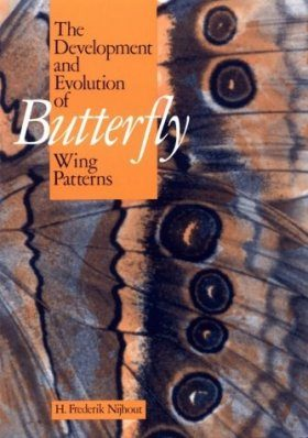 The Development and Evolution of Butterfly Wing Patterns