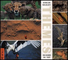 African Wildlife Themes