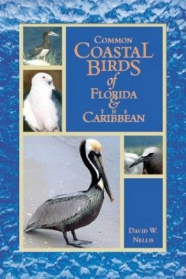 Common Coastal Birds of Florida and the Caribbean