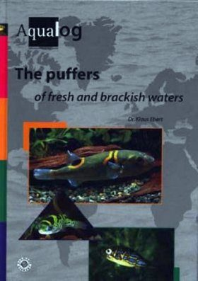 The Puffers of Fresh and Brackish Waters