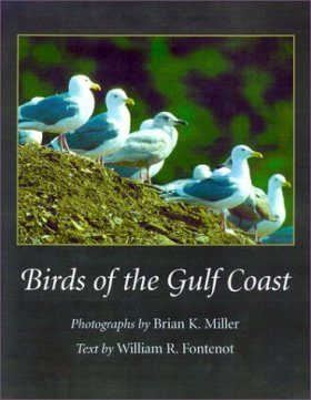 Birds of the Gulf Coast