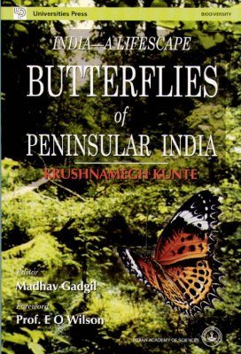India - A Lifescape: Butterflies of Peninsula India
