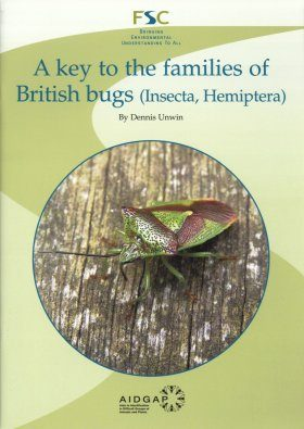 A Key to the Families of British Bugs (Insecta, Hemiptera)