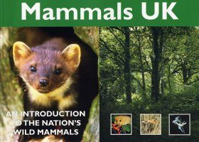 Mammals UK: An Introduction to the Nation's Wild Mammals